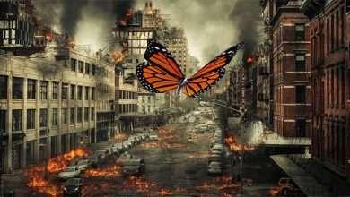 Photo of 10 phim hay về hiệu ứng cánh bướm nhấn mạnh sự quan trọng hành động, lời nói và tư tưởng của mỗi người