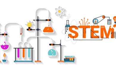 Photo of 6 sách hay về giáo dục STEM được minh họa rõ ràng, trực quan và dễ hiểu