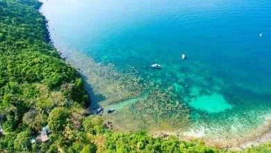 Photo of 5 sách hay về Phú Quốc duyên dáng, xinh đẹp