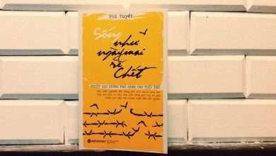 Photo of Những quyển sách hay nhất của Phi Tuyết