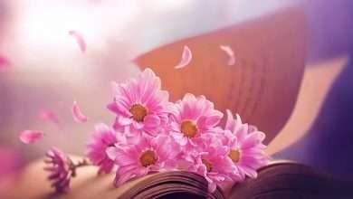 Photo of 6 sách hay về các loài hoa mở ra nhiều khám phá thú vị