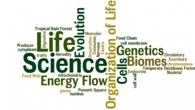 Photo of 7 sách khoa học đời sống hay khám phá những điều thú vị trong cuộc sống