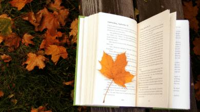 Photo of 5 quyển sách hay về mùa thu đầy dư vị xúc cảm