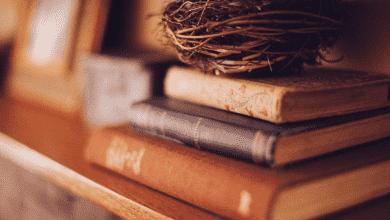 Photo of 5 quyển sách tâm lý học nhân cách đáng tham khảo